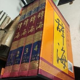 现代汉语辞海(全四卷全)