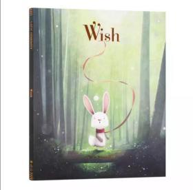英文原版Wish