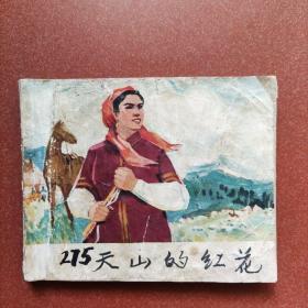 老版《天山的红花》电影绘画