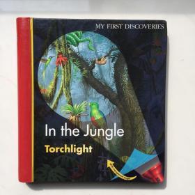 现货 第 一次发现手电筒系列 My First Discoveries In the Jungle Torchlight 英文原版儿童百科 精装