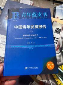 青年蓝皮书:中国青年发展报告No.4(悬停城乡间的蜂鸟)