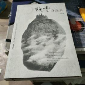 残雪自选集:中国当代著名作家自选集系列