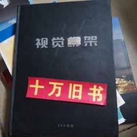 视觉绑架(艺术类画册)