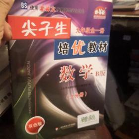 尖子生培优教材 数学 九年级 全一册 B版