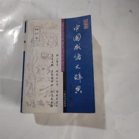 中国成语大辞典(袖珍本)