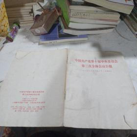中国共产党第十届中央委员会第3次全体会议公报