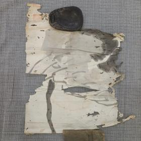 民国画,荷花,标本