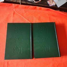 浙江潮 (合订本 第一至五期,第六至十期)影印本 2册合售 精装