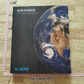 Our Choice:A Plan to Solve the Climate Crisis