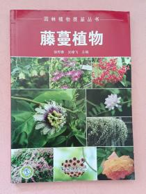 藤蔓植物【园林植物图鉴丛书】