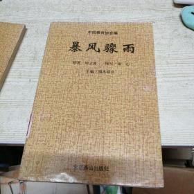 中华爱国主义文学名著文库 暴风骤雨