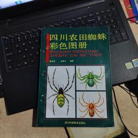 四川农田蜘蛛彩色图册(实物拍摄)