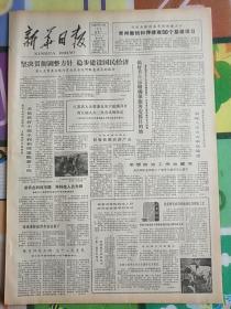 新华日报1980年12月22日