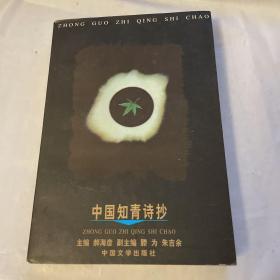 中国知青诗抄
