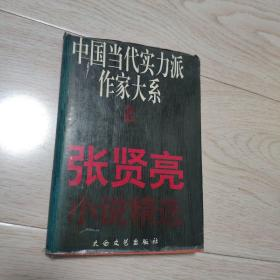 中国当代实力派作家大系  张贤亮