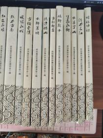 綦江街镇历史文化丛书(全二十本)