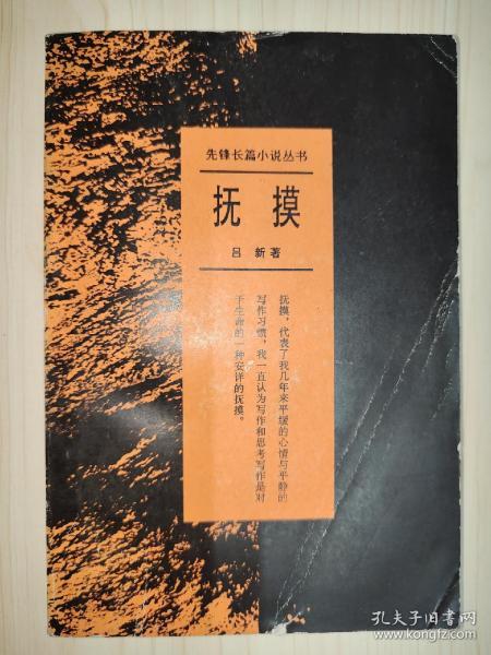 先锋长篇小说丛书:抚摸【吕新 签名本】