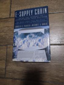 E-Supply Chain: Using the Internet to Revolutionize Your Business