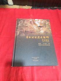 栾川旧石器遗址群考古报告:2010~2016年度