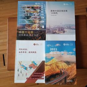 中国大消费:优势赛道,谁主沉浮   聚焦中国区域发展大棋局  网红经济:场景革命,提效赋能  2021虚实收敛4本合售