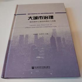 大城市治理:城市副中心建设的理论与实践