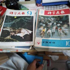 科学画报 老杂志期刊59本   1978年—1983年