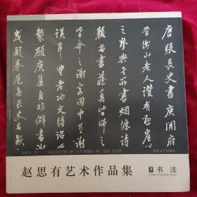 赵思有艺术作品集(书法 下)