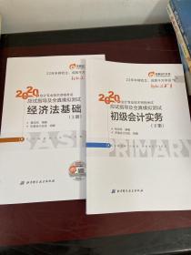 东奥初级会计2020 轻松过关1 2020年应试指导及全真模拟测试初级会计实务 (上下册) 轻一