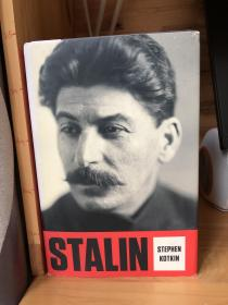 Stalin:Volume I: Paradoxes of Power, 1878-1928