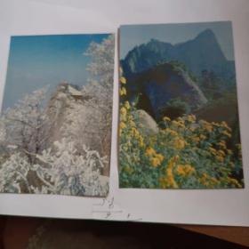 中国华山风光明信片(中英文)8枚合售