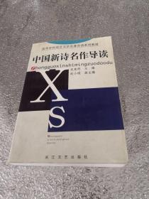 中国新诗名作导读——高等学校语言文学名著导读系列教材