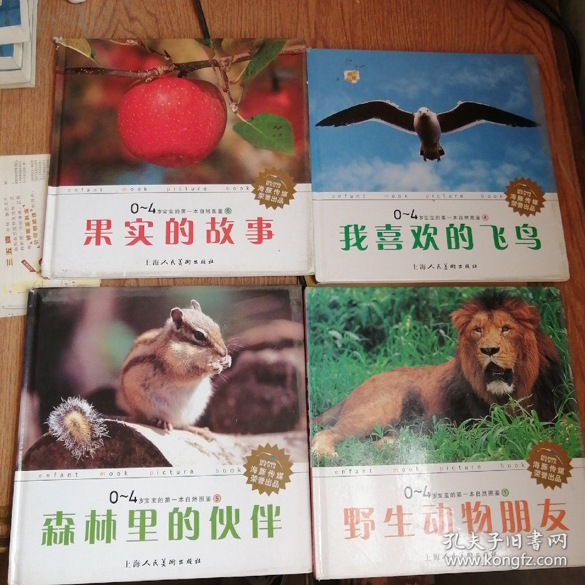 0~4岁宝宝的第一本自然图鉴(森林里的伙伴,野生动物朋友,我喜欢的飞鸟,果实的故事,)