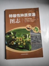 柿雄性种质资源图志  孙鹏  著;傅建敏  中国林业出版社