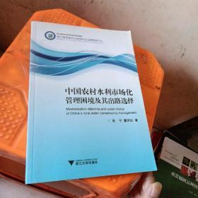 中国农村水利市场化管理困境及其出路选择