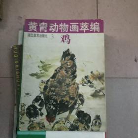 黄胄动物画萃编--3  鸡