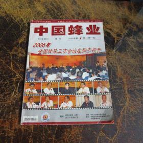 中国峰业杂志2006  7