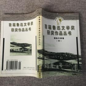 报告文学(中)-鲁迅文学奖获奖作品丛书