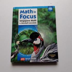 math in focus singapore math by marshall cavendish