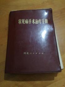 常见病手术治疗手册 软精装