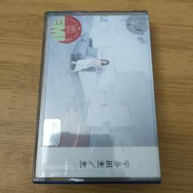 宇多田光—光—专辑—正版磁带(只发快递)
