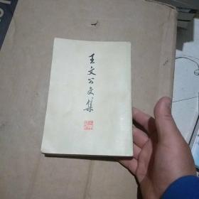 王文公文集(上)