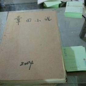 章回小说2004.1-12缺2.7