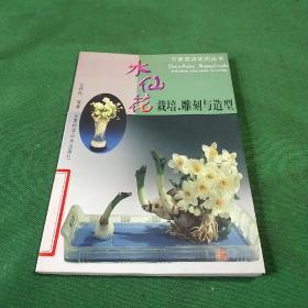 水仙花栽培.雕刻与造型