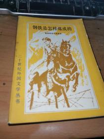 二十世纪外国文学丛书; 钢铁是怎样炼成的