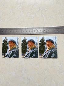 毛主席照片  彩印  3张