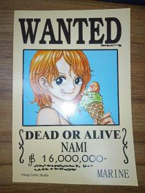 WANTED——DEAD OR ALIVE (NAMI)【英文漫画卡片】