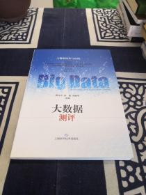 大数据技术与应用:大数据测评