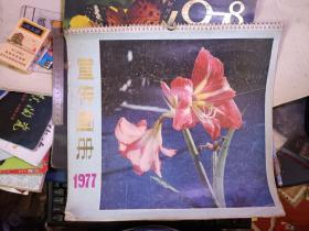 70年代老挂历/·1977年宣传画册挂历(全13张)