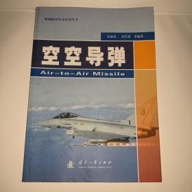 精确制导技术应用丛书:空空导弹