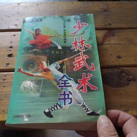 少林武术全书
